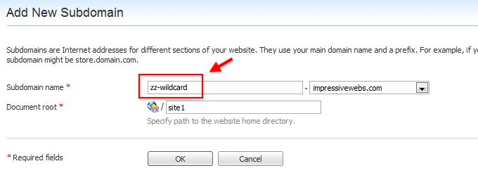 Choose a wildcard subdomain name
